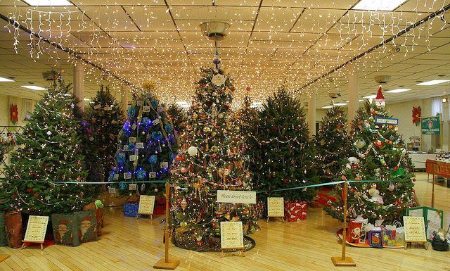 TreeFest at the Caldwell Conservancy