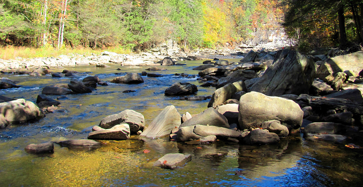 Loyalsock Creek in World's End State Park