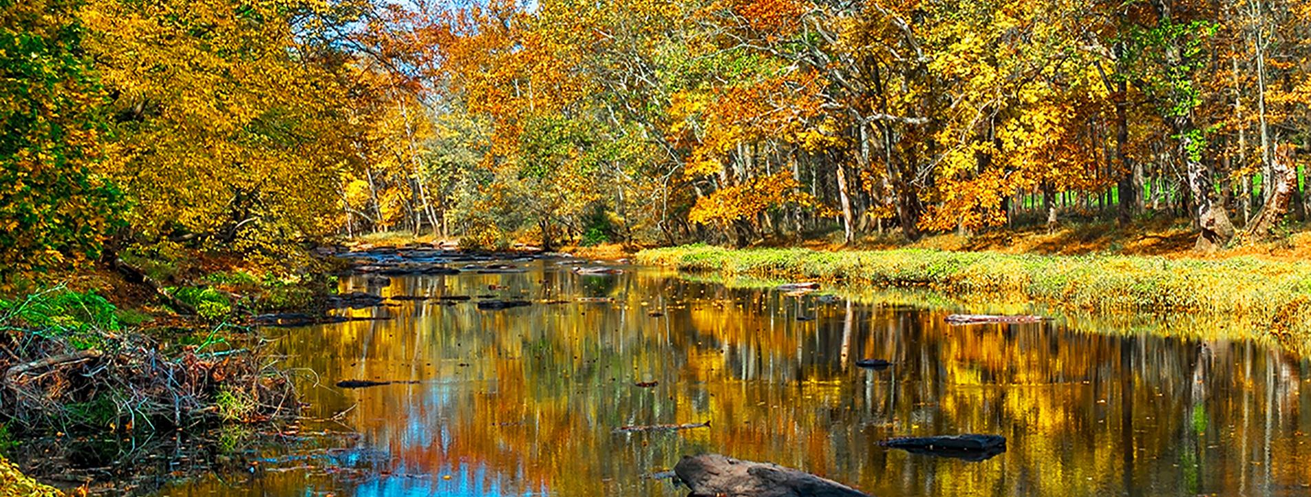 Tohicken Creek, Bucks County, PA