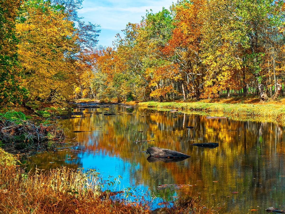 Tohickon-Creek-Bucks-Co PA